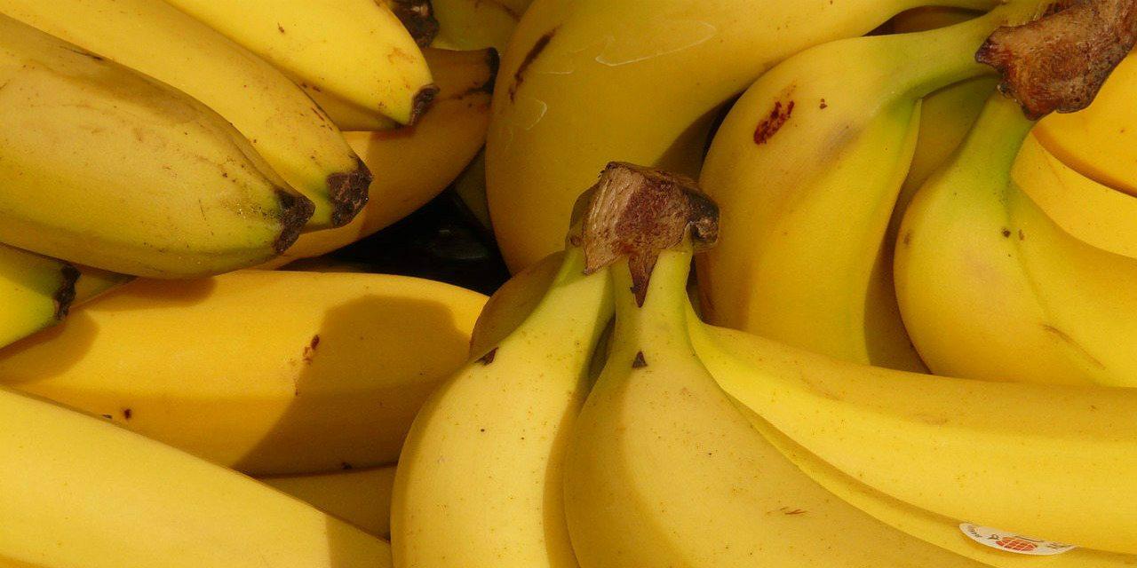 Banány - recepty